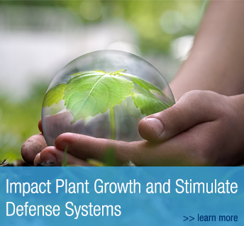 Biojuvant Impact Plant Growth and Stimulate Defense Systems
